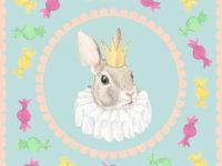 rabbitcoaster